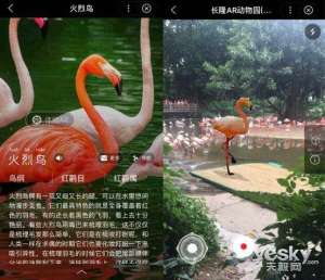 Baidu and Chimelong Zoo jointly launched a smart applet: Support for panoramic AR